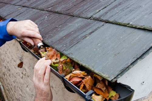 5 Roof Maintenance Tips From Our Roofing Company In Denver