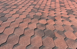 Which Shingles Are Best For Your Roofing In Fort Collins CO?