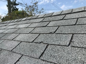 An In-Depth Guide To Your Roof Inspection In Golden, CO