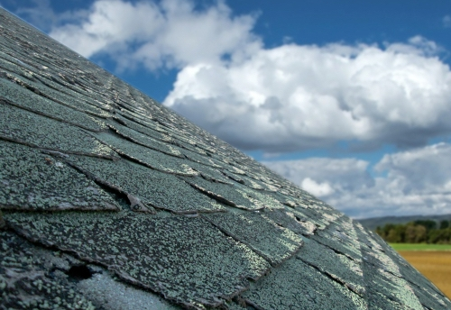 Signs That It's Time To Call A Littleton Roofing Contractor